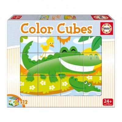 Cubos Coloridos Vida Animal