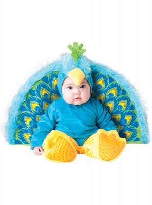 Fato Pavão Real Bebé