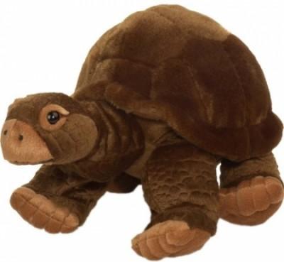 Peluche Tartaruga dos Galápagos