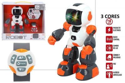 Robot Radio Control Sortido