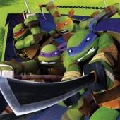 20 Guardanapos Tartarugas Ninja 33x33cm