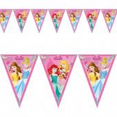 Bandeirolas Princesas Disney Dreaming
