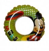 Boia Mickey