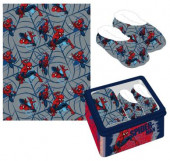 Caixa Metálica Homem-Aranha Marvel