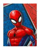 Capa A4 Elásticos Spiderman