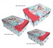 Conjunto 3 caixas presente Frozen