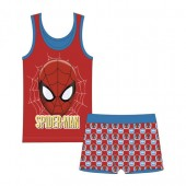 Conjunto roupa interior de Spiderman