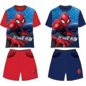 Conjunto Verão Spiderman Marvel Sortido