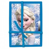 Diario Frozen Elsa