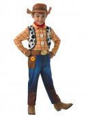 Disfarce Woody Toy Story Menino