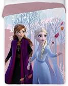 Edredon Frozen 2 Disney 180x260cm