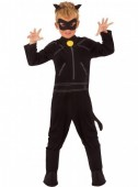 Fato Carnaval Cat Noir  - LadyBug