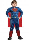 Fato Superman da Liga da Justiça