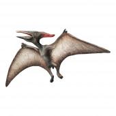 Figura Dinossauro Pteranodon