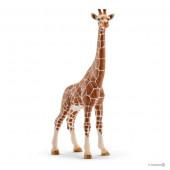 Figura Girafa Fêmea