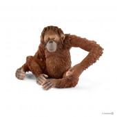 Figura Orangotango Fêmea