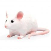 Figura Ratinho Mojo S