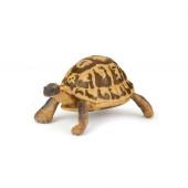 Figura Tartaruga do Mediterrâneo Papo