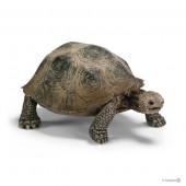 Figura Tartaruga Gigante