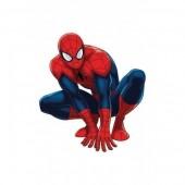 Figuras Decorativas Spiderman