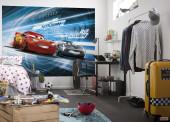 Fotomural Disney Cars 3 Simulation