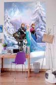 Fotomural Disney Frozen Winter Land