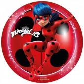 Ladybug Decoração Bolo 20cm