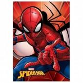 Manta polar do Spiderman Marvel
