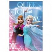 Manta polar Frozen  Queen of Ice