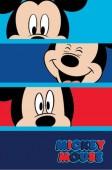 Manta polar menino Mickey Mouse