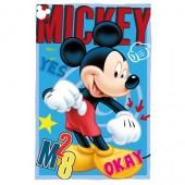 Manta Polar Mickey Disney - Okay