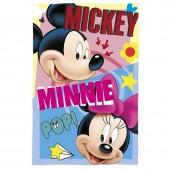 Manta polar Mickey e Minnie Disney