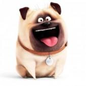 Mochila Peluche Mascotes Pets Mel