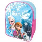 Mochila pre escolar Frozen Expert