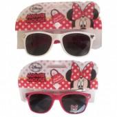 Óculos sol Wayfarer Minnie sortidos