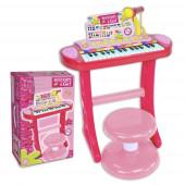 Órgão Eletrónico com Micro e Banco Rosa