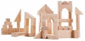 Plan Toys - Blocos 50 unidades