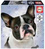 Puzzle Cão French Bulldog 100 peças