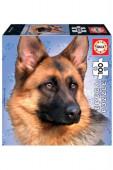 Puzzle Cão German Shepherd 100 peças