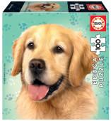 Puzzle Cão Golden Retriever 100 peças