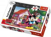 Puzzle Disney Mickey e Minnie no Jardim