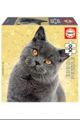 Puzzle Gato British Shorthair 100 peças