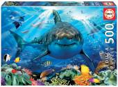 Puzzle Grande Tubarão Branco 500 peças