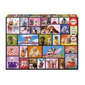 Puzzle Momentos Partilhados 1000 peças