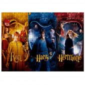 Puzzle Ron, Harry e Herminone Harry Potter 1000 peças
