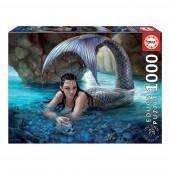 Puzzle Tesouros Escondidos 1000 peças