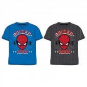 T-Shirt Spiderman Marvel Sortida