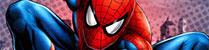 Festas Spiderman